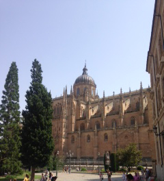 Photograph of a catheral in Salamanca Spain