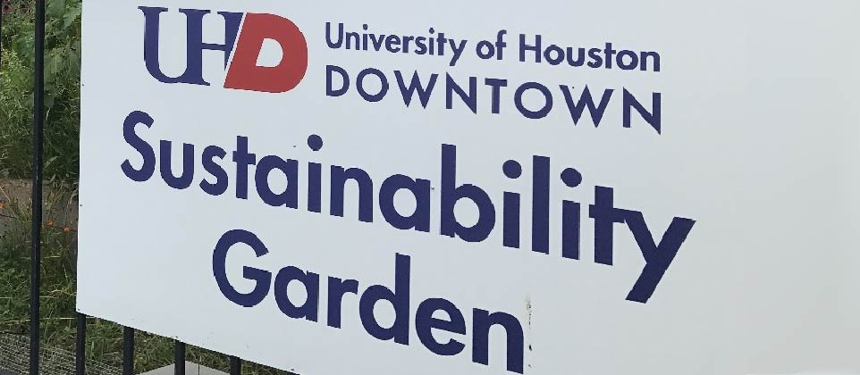 Urban Agriculture & Sustainability