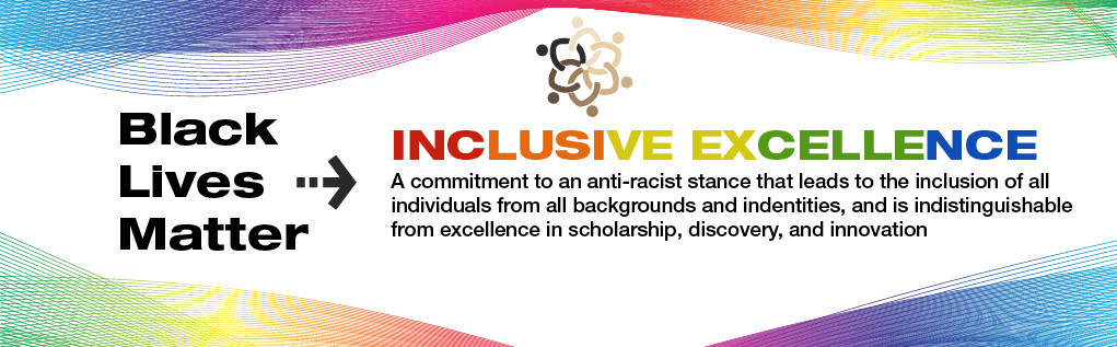 Inclusive Excellence Page Banner