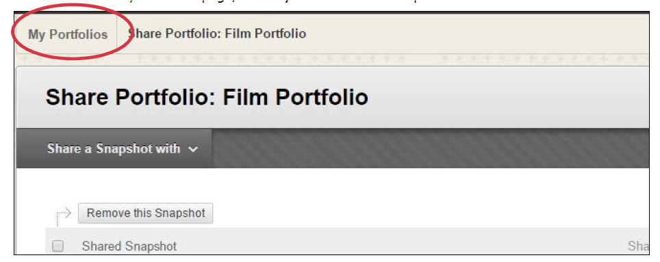 a screenshot of the My Portfolios button circled in red