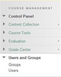a screenshot of the Course Management drop down menu with Users and Groups expanded