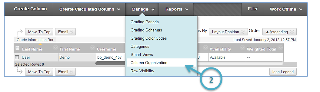 a screenshot of the Manage drop down menu with the Column Organization option highlighted