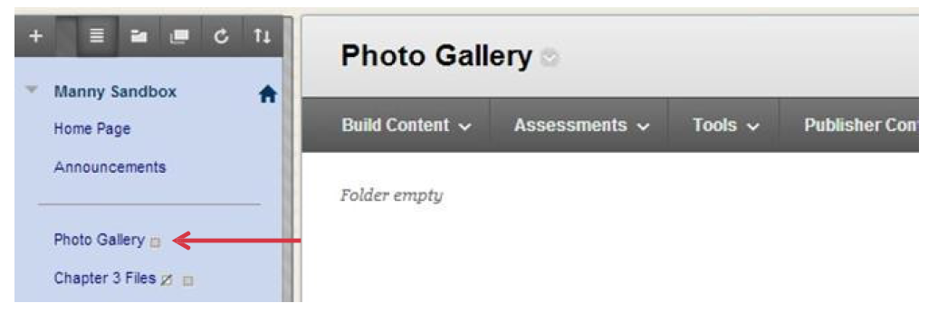 a screenshot of the Photo Gallery content area