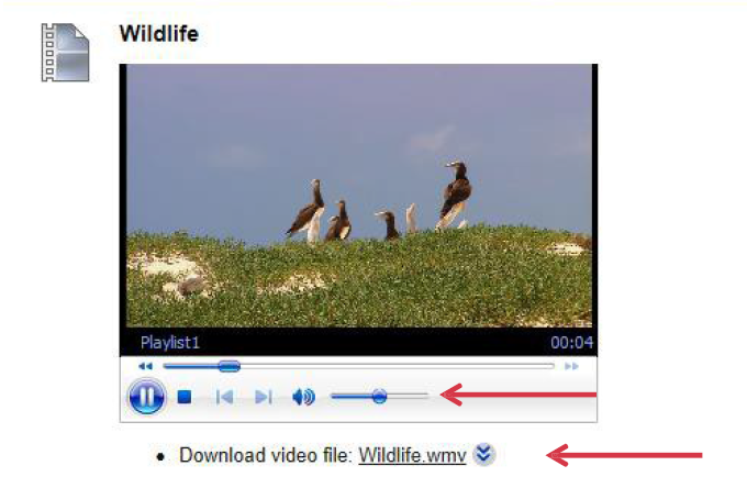 a screenshot of the embedded video with the download button
