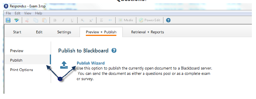 Within the tab, select Publish Wizard.