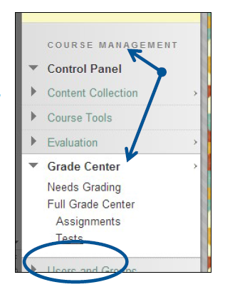 a screenshot of the Course Management area with the Grade Center drop down menu expanded and Tests circled