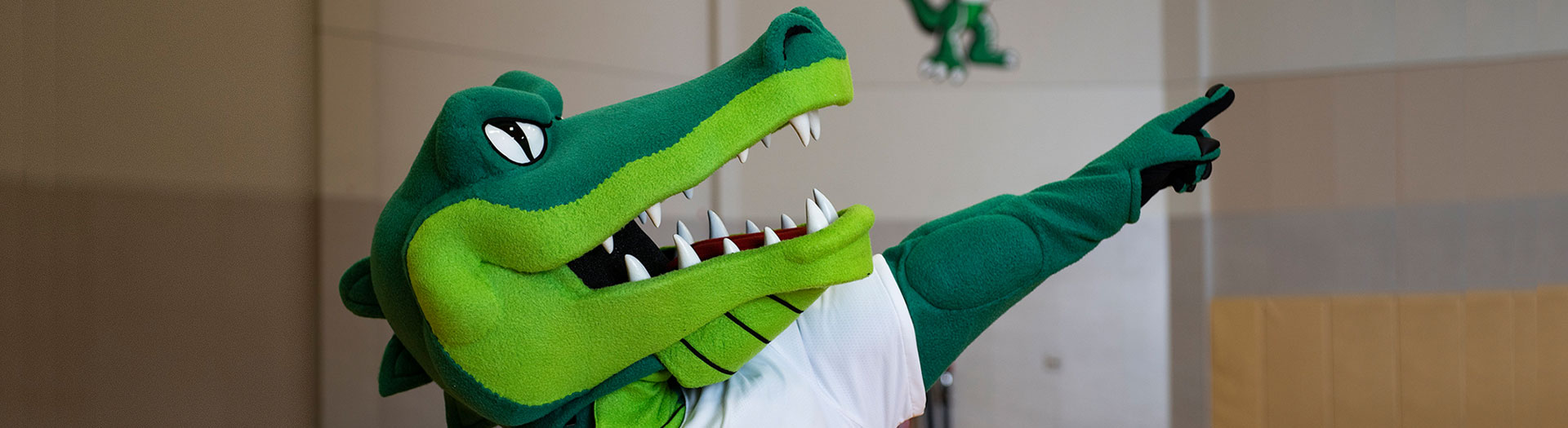 Ed Gator in the basketball court, pointing and looking up