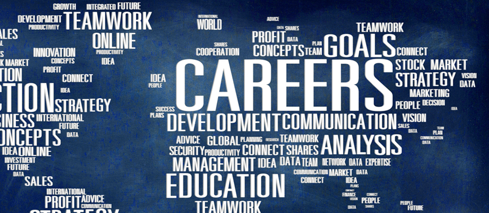 Career Wordle